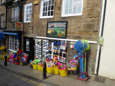 Robin Hood's Bay dog walk, North Yorkshire - Driving with Dogs