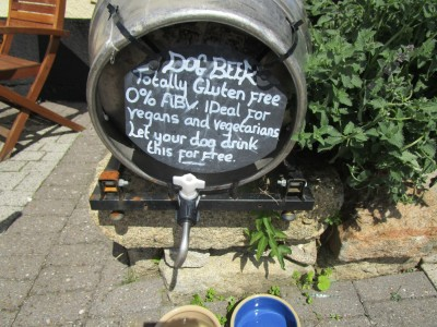 A38 dog-friendly pub overlooking Dartmoor, Devon - Driving with Dogs