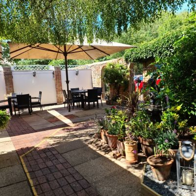 Dog-friendly refreshments and dog walk near Colchester, Essex - Driving with Dogs