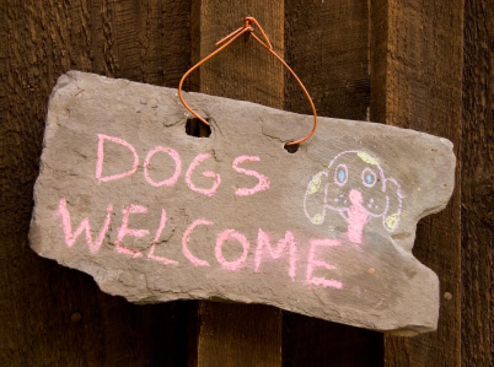 Dog-friendly pub near Rugby, Warwickshire - Warwickshire dog-friendly pubs.jpg