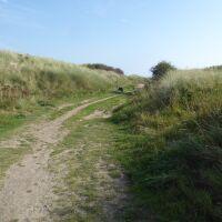 A1 dog walk, beach and dog-friendly pub near Alnick, Northumberland - Northumberland dog walking places.jpg