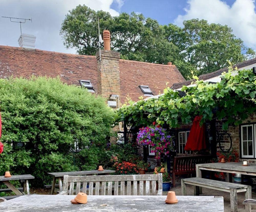 A26 dog-friendly pub and dog walk near Lewes, East Sussex - Sussex dog-friendly pub and dog walk