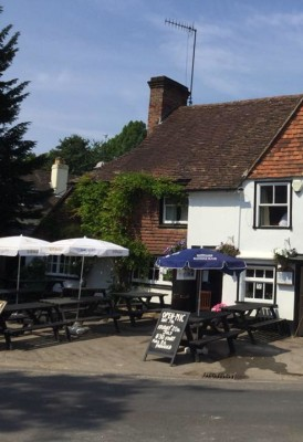 Village inn and dog walk near Petersfield, Hampshire - Driving with Dogs