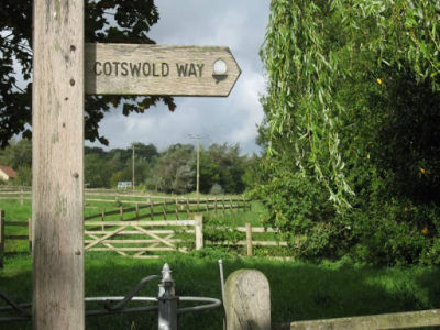 M4 Junction 18 dog walks and dog-friendly pub, South Gloucestershire - Driving with Dogs