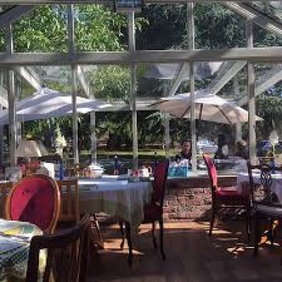Dog-friendly Cafe and woodland, Cheshire - Driving with Dogs