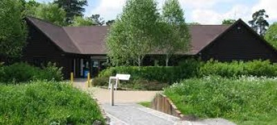 M40 Junction 1 dog walk with cafe, Buckinghamshire - Driving with Dogs