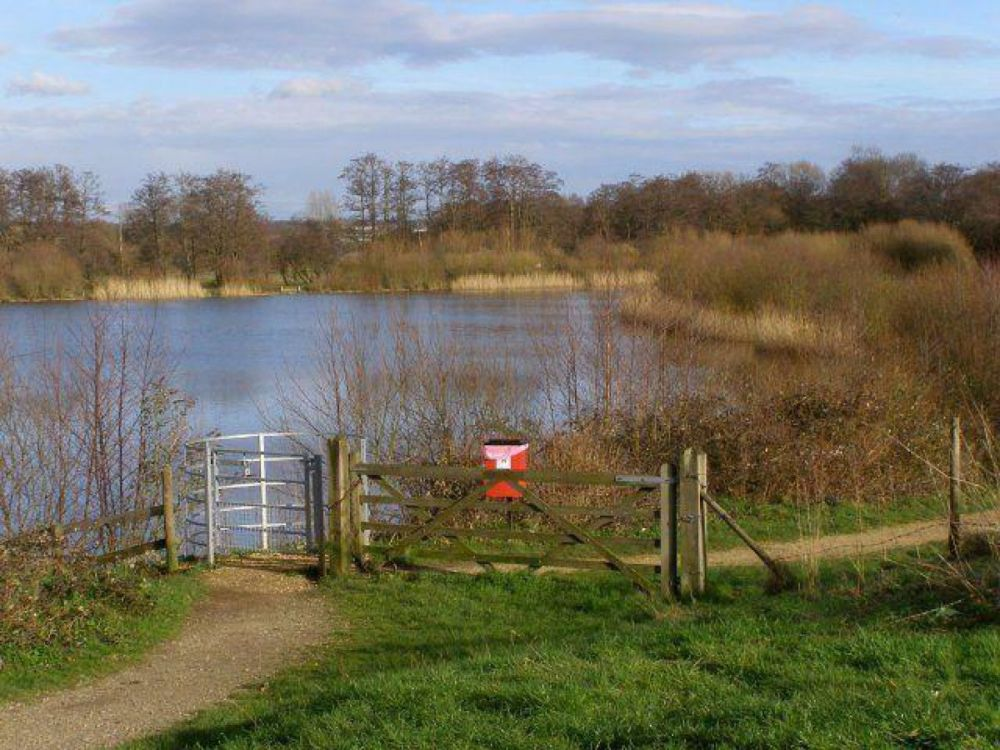 M27 lakeside dog walk near Southampton, Hampshire - Hampshire dog walk