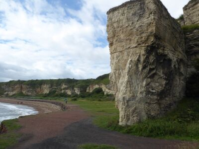 Unique dog-friendly beach near Seaham, County Durham - Driving with Dogs