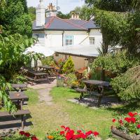 A35 New Forest dog-friendly pub and dog walk, Hampshire - Hampshire dog-friendly pub and dog walk