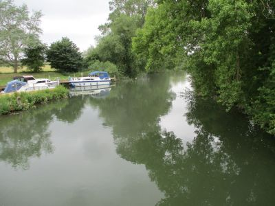 Hidden dog-friendly pub with B&B and dog walk by the Thames, Oxfordshire - Driving with Dogs