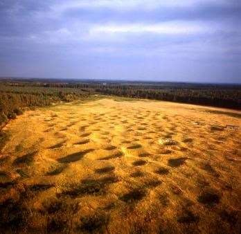 A138 Neolithic dog walk, Norfolk - Driving with Dogs