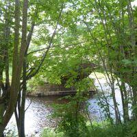 A69 Dog-friendly country inn with dog walk and swimming, Northumberland - Northumberland dog-friendly pub and dog walk