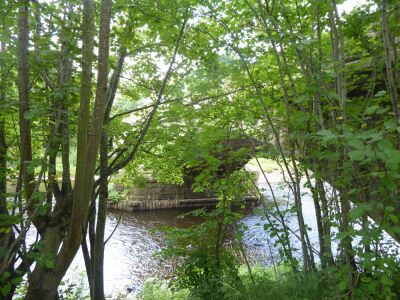 A69 Dog-friendly country inn with dog walk and swimming, Northumberland - Driving with Dogs