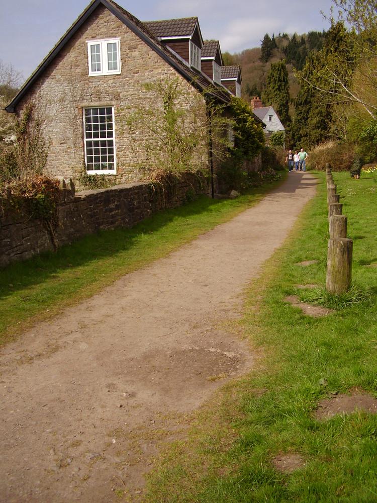 M48 dog-friendly pub and dog walk, Gwent - 1