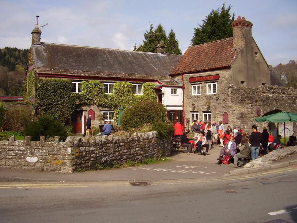M48 dog-friendly pub and dog walk, Gwent - 2