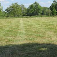 River Meadow Dog Walking Fields, Warwickshire - IMG_8192.JPG