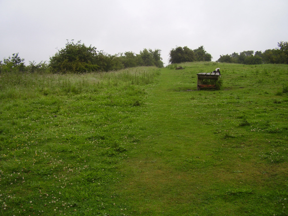 M54 Junction 4 country park dog walk, Shropshire - Dog walks in Shropshire
