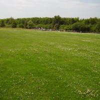 Heanor local dog walks near Eastwood, Derbyshire - Dog walks in Derbyshire