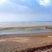 Ferring dog-friendly beach, West Sussex - Dog walks in Sussex