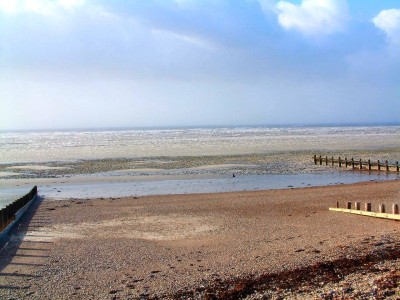 Ferring dog-friendly beach, West Sussex - Driving with Dogs