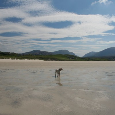 Traigh Uige dog-friendly beach on the Isle of Lewis, Scotland - Driving with Dogs