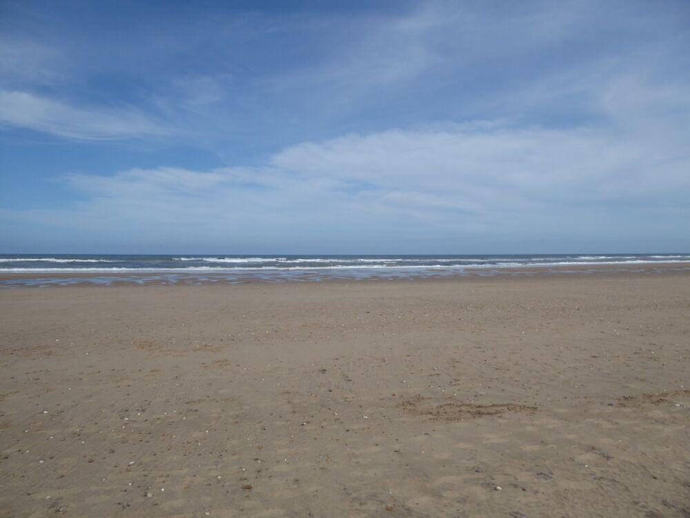 Hunmanby Gap dog-friendly beach, Yorkshire - Yorkshire dog-friendly beaches and dog walks