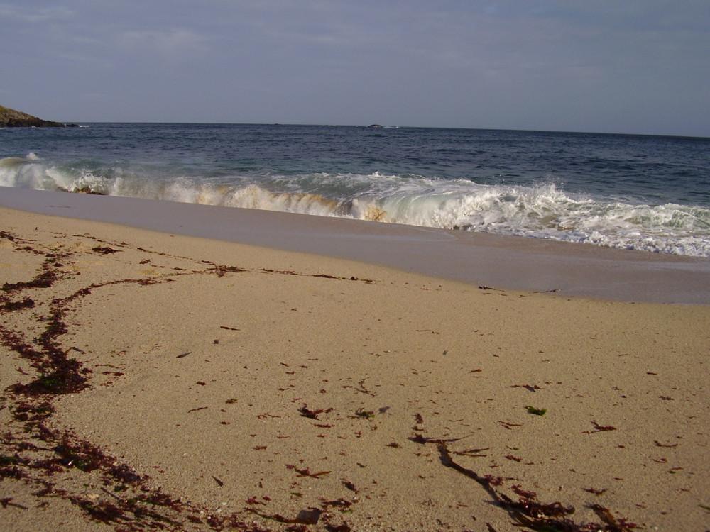 Portheras Cove - not so dog-friendly beach, Cornwall - Dog walks in Cornwall