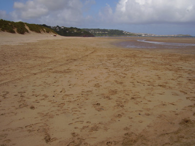 Porthkidney dog walk, Cornwall - Driving with Dogs