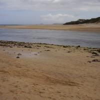 Porthkidney dog walk, Cornwall - Dog walks in Cornwall