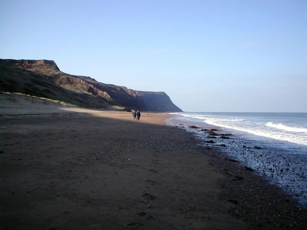Skinningrove dog-friendly beach, North Yorkshire - Dog walks in Yorkshire