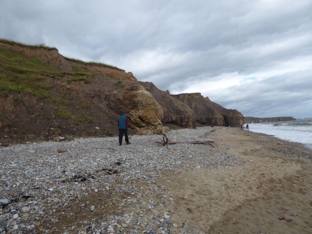 Heritage coast dog walks and beach, County Durham - P1020654.JPG