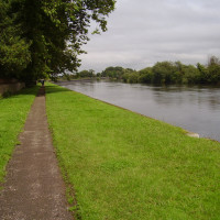 Fiskerton River Trent dog walk, Nottinghamshire - Dog walks in Nottinghamshire