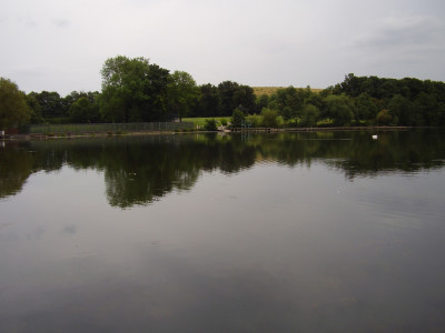Popular Country Park dog walks near the A1, Nottinghamshire - Driving with Dogs