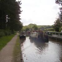 Hartshill canalside walk, Warwickshire - Dog walks in Warwickshire