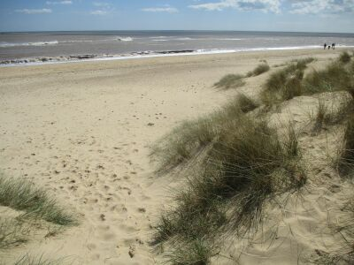 Southwold Denes dog-friendly beach, Suffolk - Driving with Dogs