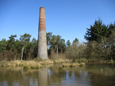 Woodland dog walk and history, Somerset - Driving with Dogs