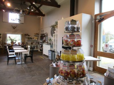 Dog-friendly cafe with dog walk and outstanding views, Gloucestershire - Driving with Dogs