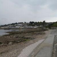 Scenic Beach and Marina (seasonal access for dogs), Cornwall - 20210429_130040.jpg