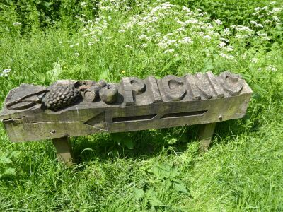 Witham Way country park dog walk - fully accessible, Lincolnshire - Driving with Dogs