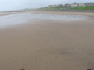 Seascale dog-friendly beach, Cumbria - Driving with Dogs