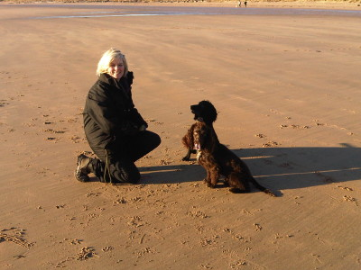 Alnmouth dog-friendly beach, Northumberland - Driving with Dogs