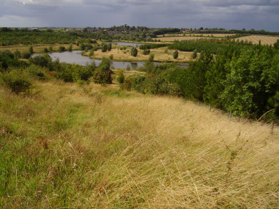 Country park dog walk near Ibstock, Leicestershire - Driving with Dogs