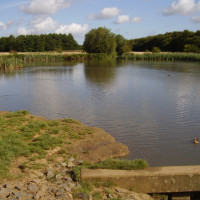 Melton Mowbray country park dog walk, Leicestershire - Dog walks in Leicestershire