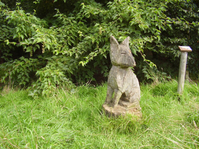 A6 country park dog walks near Blaby, Leicestershire - Driving with Dogs
