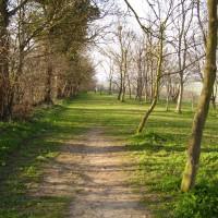 M1 Junction 12 dog walk and dog-friendly pub, Bedfordshire