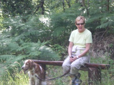 Brackloon Woods dog walk, RoI - Driving with Dogs