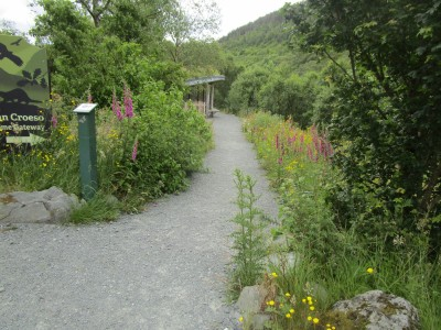 A470 wildlife reserve picnic spot and walk, Wales - Driving with Dogs