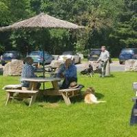 A303 Services near Yeovil with cafe and dog exercising, Somerset - A303 dog walk and services.jpg
