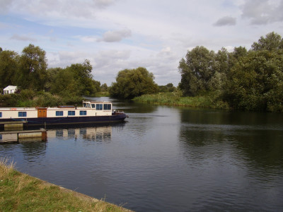 A1 dog walk and dog-friendly pub, Cambridgeshire - Driving with Dogs