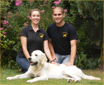 Wagging Tails, Hampshire - Driving with Dogs